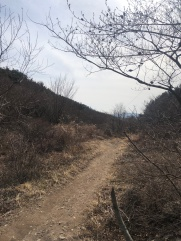 The muddy trail just after Nammun village
