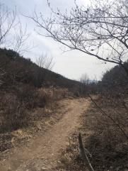 The muddy trail just after Nammun village